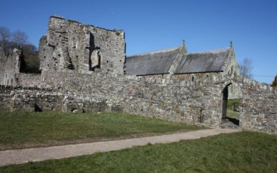 The Segranus Stone - What to see near Cardigan
